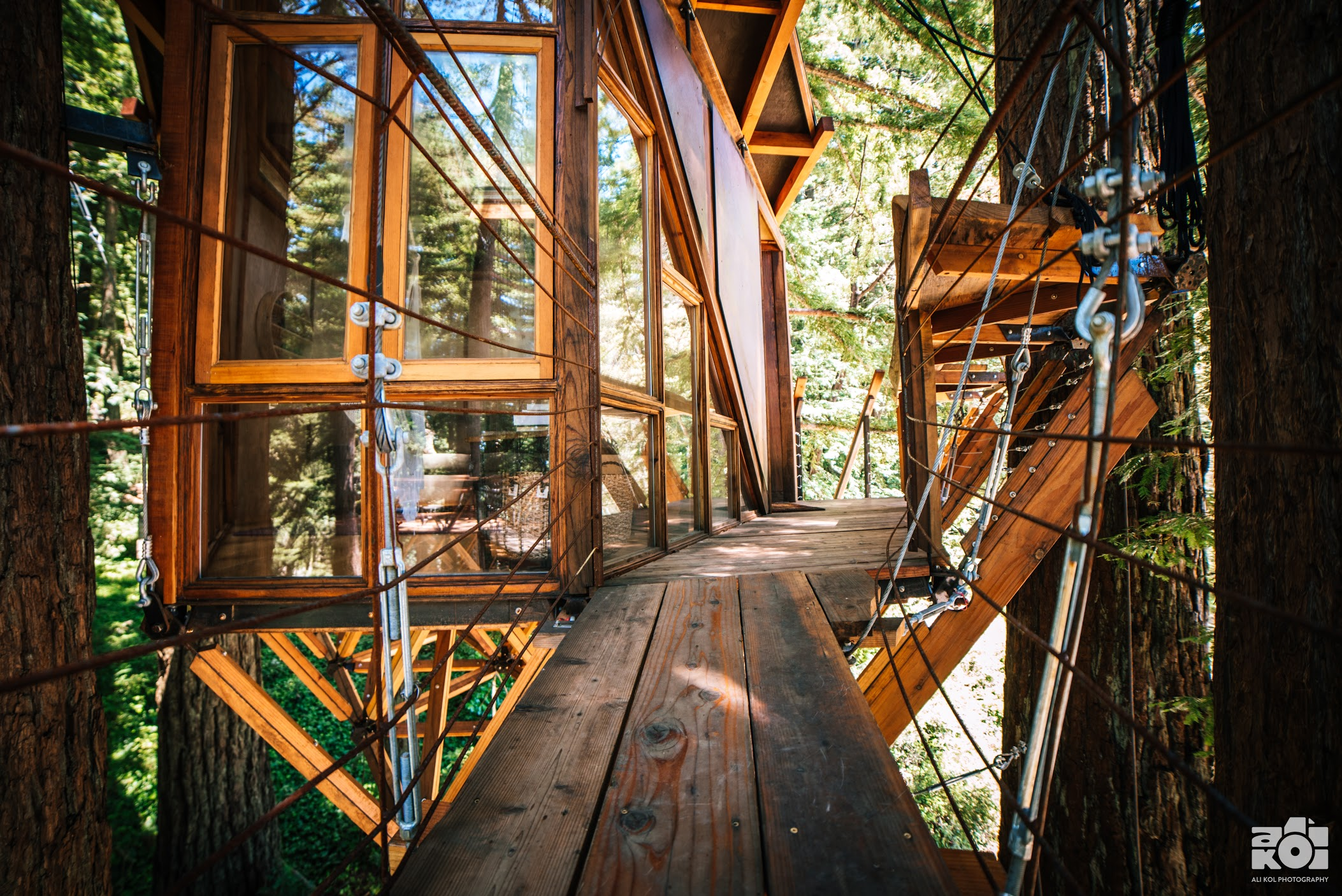 Woodside Tree House