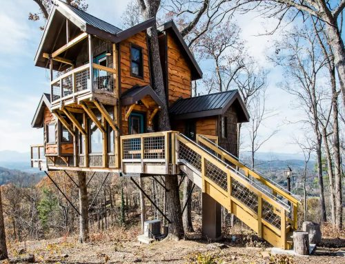 Ever want to live in a Tree house? Climb into this unique home tour.