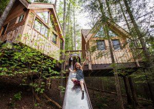Canopy Looking Glass | Weird Homes Tour