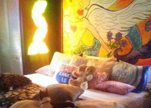 Bedroom in a Weird Home
